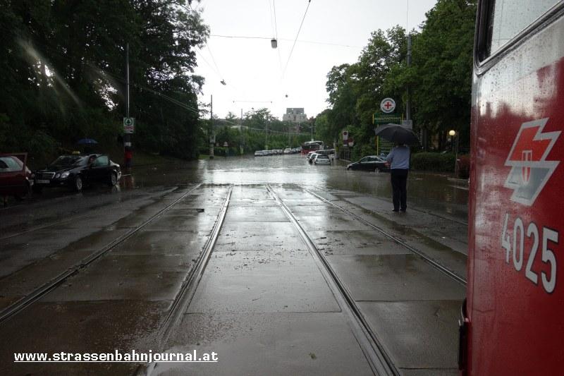 Linie 38 Billrothstraße